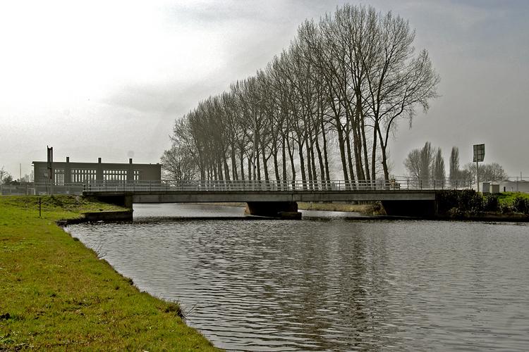 RotterdamseBrug2